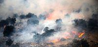 بازداشت عاملان آتشسوزی جنگلهای خائیز