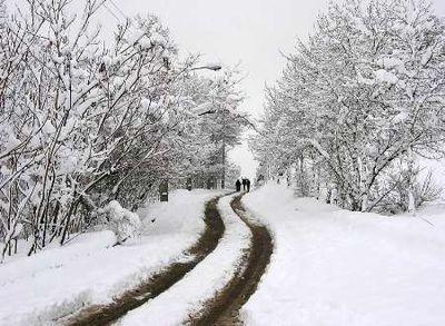 فردا بارش برف و باران درغرب و مرکز کشور