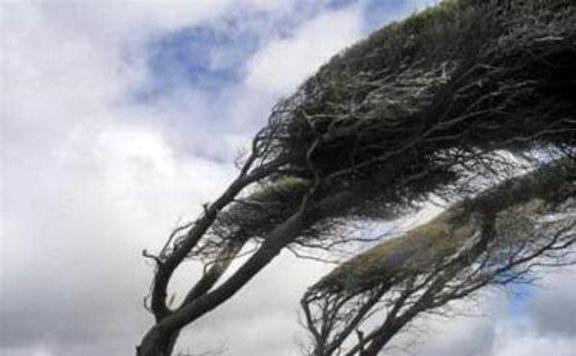 باد شدید در تهران طی ۲روز آینده