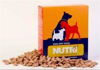 واردات غذای سگ و گربه به کشور ۵برابر شد!