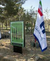 تقدیر از بانک صادرات برای حمایت از طرح ملی نهضت درختکاری
