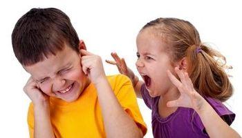 ویژگیهای رفتاری پرخاشگران