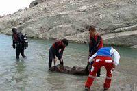 جوان ۲۱ساله در رودخانه دز غرق شد