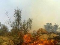 بولی همچنان در آتش میسوزد