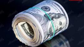 همتی: نرخ ارز ٢٠هزار تومان غیرمنطقی است