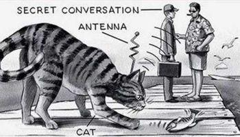 جاسوسی سیا با استفاده از حیوانات