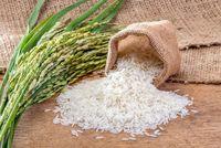 تعیین تاریخ واردات برنج فاقد منطق اقتصادی است/ ادامه اختلاف نظر بر سر میزان نیاز کشور به واردات برنج