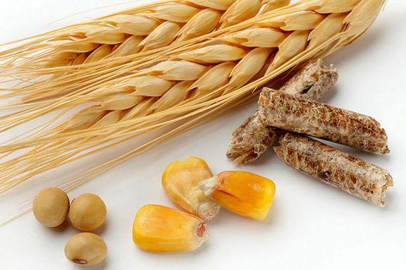 اختصاص بیش از 150میلیارد به شرکت واردکننده خوراک دام