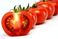 هر کیلو گوجهفرنگی گلخانهای 11هزار تومان شد