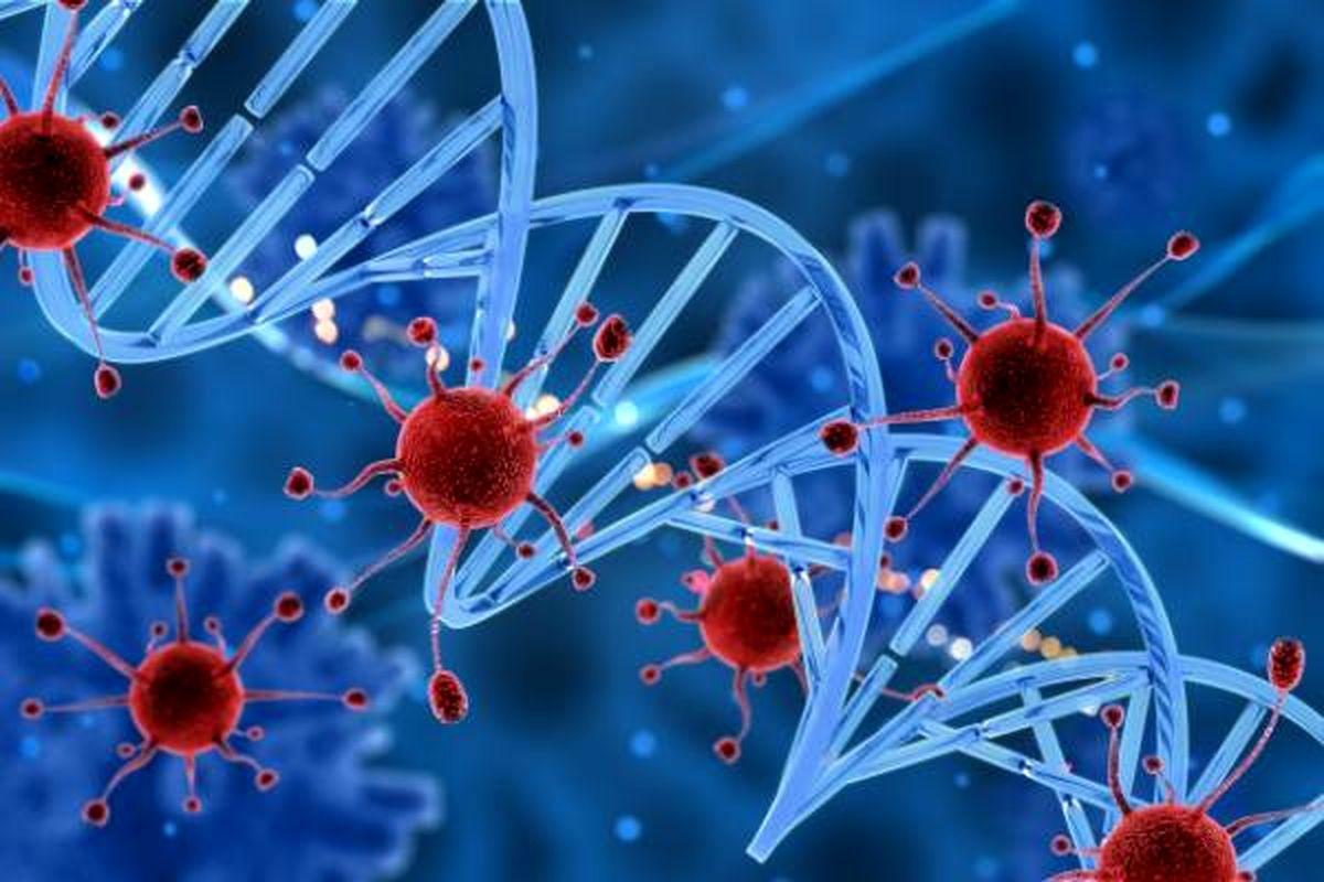کشف ویروسی که به درمان سرطان کمک می کند