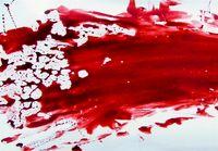 قتل ۳ جوان در درگیری دیشب نظام آباد!