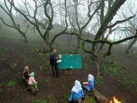کلاس درس در دِل جنگلهای تالش! +عکس