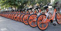 دوچرخهسواران سطح شهر بیمه هستند؟
