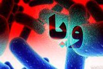 تکذیب اپیدمی وبا در کشور
