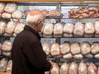 دور جدید توزیع مرغ منجمد و تخم مرغ به نرخ دولتی آغاز شد