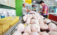 مصرف گوشت مرغ در کشور چقدر کاهش یافته است؟