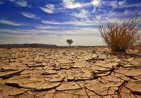 خشکسالی در تالاب بینالمللی «یادگارلو» +تصاویر