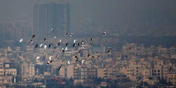 افزایش 65درصدی نرخ ورود به محدوده کنترل آلودگی هوا بر روی ترافیک اثرگذار است؟