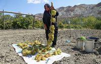 مصرف زیاد انگور خطر دارد؟