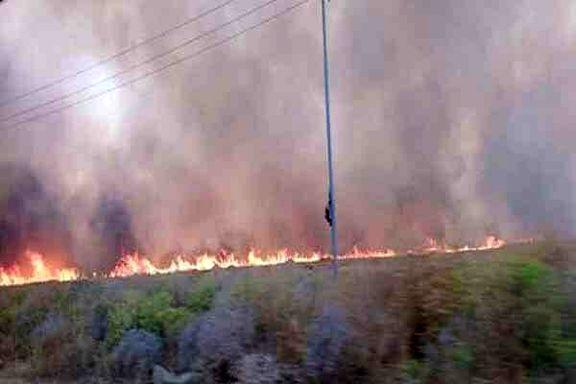 ۵۸راس گوسفند در میرجاوه در آتش سوختند