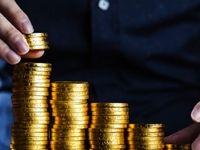 سنگهایی پیش پای لنگ سرمایهگذاری