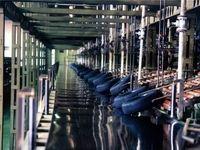 رایزنی تولیدکنندگان تایر برای تأمین مواد اولیه