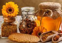 فعال صنعت زنبورداری: تولید عسل باکیفیت، راهگشای صادرات است
