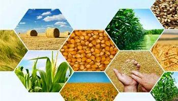 قاچاق محصولات ناب کشاورزی ایران به خارج