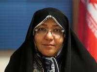 راهکار شورای شهر برای معضل مگسهای سفید تهران