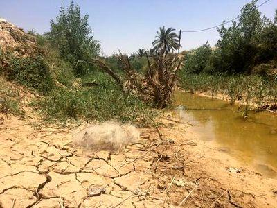 قطع گسترده آب در روستاهای شادگان خوزستان +عکس