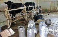 دامداران در انتظار افزایش 22.5درصدی نرخ شیر خام