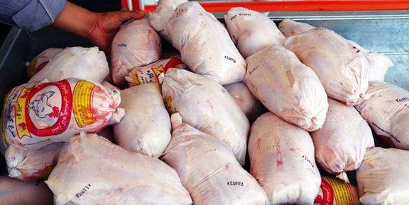 زمان عرضه مرغ از کشتارگاههای رتبهبندی شده اعلام شد