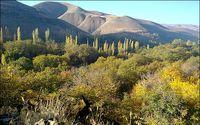 دامان سرسبزی روستای برغان +عکس