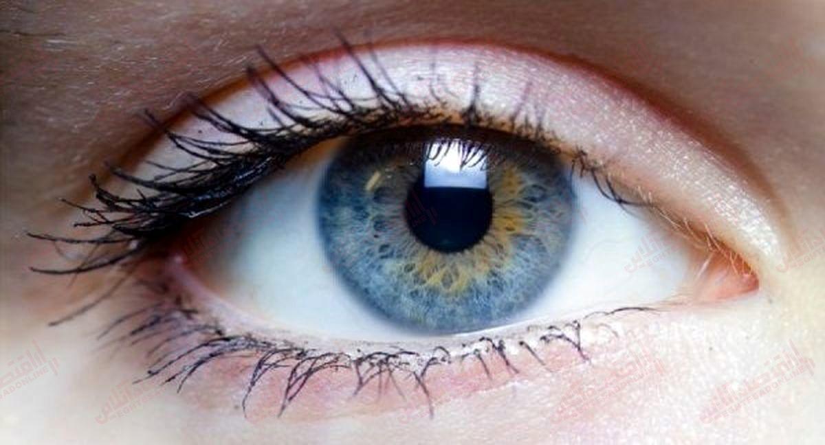 ۸ ماده مغذی که سلامت چشم شما را بهینه می کنند