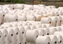 تامین ارز دولتی برای واردات کاغذ