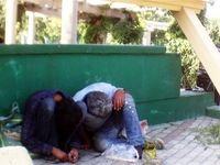 کوچ معتادان متجاهر به بزرگراههای شمالشهر