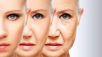 ۴ پرسش رایج درباره پیری پوست