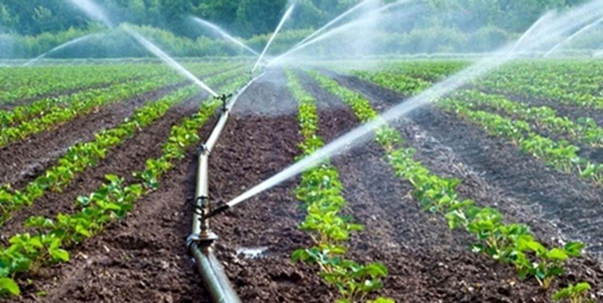 محصولات کشاورزی؛ قربانیان خشکسالی