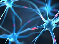 افزایش خطر سکته مغزی در ایام کرونا