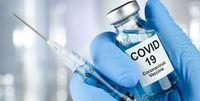 آغاز کارآزمایی بالینی واکسن رازی کوو پارس