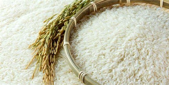 ورود ۱۸۰هزارتن برنج در انتظار تخصیص ارز