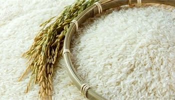 علت افزایش 20درصدی قیمت برنج