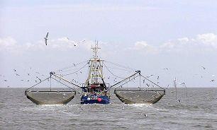 تکذیب ماهیگیری کشتیهای خارجی در آبهای ایران