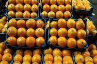 اعلام ضوابط جدید صادرات میوه و تره بار