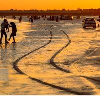 ساحل خلیج فارس زیر چرخ خودروها + عکس
