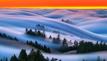 منظره خارق العاده از سان فرانسیسکو +تصاویر