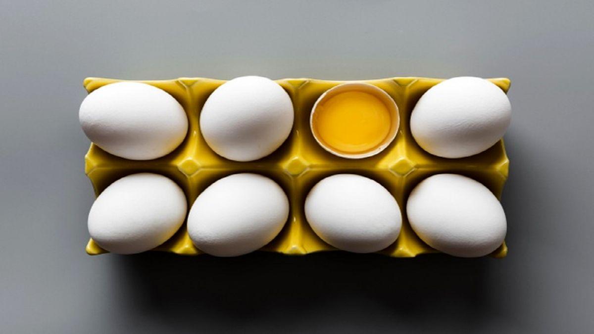 هر شانه تخممرغ چند؟