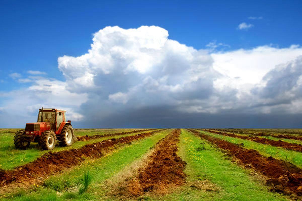 کشاورزی برای روزهای ابتدایی آبان چه کارهایی انجام دهند؟