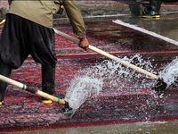 کارگر قالیشویی ۵۰تخته فرش را دزدید!