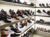 صادرات کفش افزایش یافت